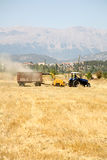 Agricoltura e trattore Fotografia Stock