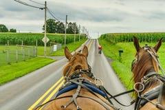 Agricoltura e tubi flessibili del campo dell'azienda agricola del paese di Amish a Lancaster, PA Fotografie Stock