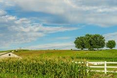 Agricoltura e tubi flessibili del campo dell'azienda agricola del paese di Amish a Lancaster, PA Fotografia Stock Libera da Diritti