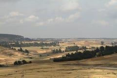 Agricoltura ed agricoltura in Africa Fotografia Stock Libera da Diritti