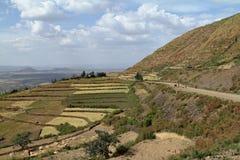 Agricoltura ed agricoltura in Africa Fotografia Stock