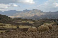 Agricoltura ed agricoltura in Africa Immagini Stock