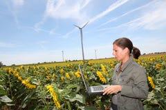Agricoltura ed ambiente Immagine Stock Libera da Diritti
