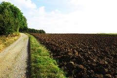 Agricoltura ed Amsterdam Fotografia Stock