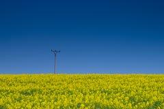 Agricoltura ed energia Fotografia Stock Libera da Diritti