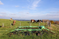 Agricoltura ed industria lattiera Fotografie Stock