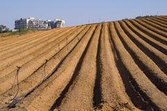 Agricoltura ed urbano Immagini Stock