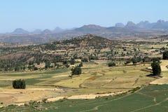 Agricoltura in Etiopia Immagine Stock Libera da Diritti