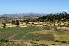Agricoltura in Etiopia Fotografia Stock Libera da Diritti