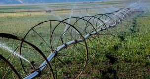 Agricoltura fatta qui Fotografie Stock