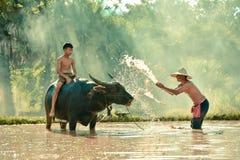 Agricoltura felice dell'agricoltore Fotografie Stock Libere da Diritti