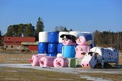 Agricoltura finlandese Immagini Stock