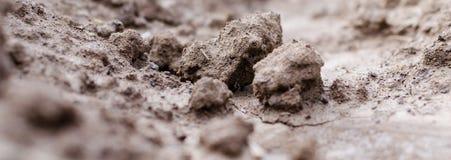 agricoltura Foto di argilla marrone nel giardino Macro effetto Immagini Stock Libere da Diritti