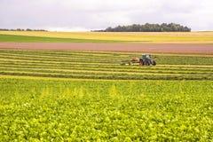 Agricoltura in Francia Fotografia Stock Libera da Diritti