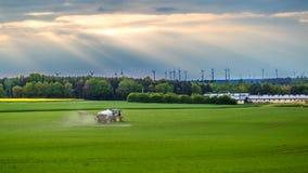 Agricoltura in Germania Fotografia Stock Libera da Diritti