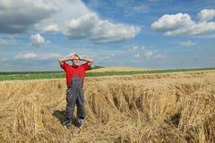 Agricoltura, gesto dell'agricoltore nel giacimento di grano Fotografia Stock Libera da Diritti