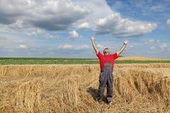 Agricoltura, gesto dell'agricoltore nel giacimento di grano Fotografie Stock
