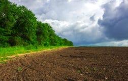 agricoltura ha preparato il campo per piantare Immagine Stock Libera da Diritti