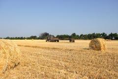 Agricoltura - il trattore porta un mucchio di fieno Trattore con fieno Fotografia Stock Libera da Diritti