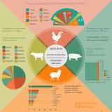 Agricoltura, infographics di zootecnia, illustrazioni di vettore Fotografia Stock Libera da Diritti