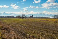 Agricoltura intorno all'arco alpino Fotografie Stock Libere da Diritti