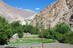 Agricoltura in Ladakh, India Fotografie Stock