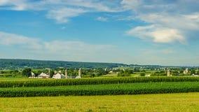 Agricoltura a Lancaster, PA del campo del granaio dell'azienda agricola del paese di Amish Immagini Stock