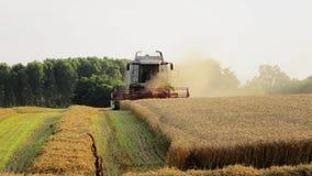 Agricoltura, mietitrebbiatrice stock footage