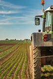 Agricoltura moderna con il trattore su un giacimento dell'insalata Fotografie Stock
