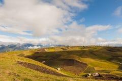 Agricoltura nei picchi di montagna delle Ande Fotografia Stock