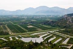 Agricoltura nel delta del fiume vicino a Dubrovnik Fotografia Stock Libera da Diritti