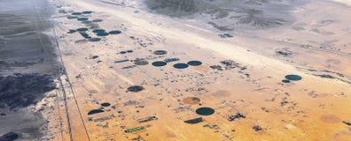 Agricoltura nel deserto Fotografia Stock