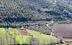 Agricoltura nella valle a Alcaraz Fotografia Stock Libera da Diritti