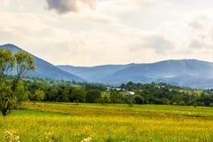 Agricoltura nelle montagne ucraine Fotografia Stock Libera da Diritti