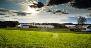 Agricoltura in Norvegia Fotografia Stock
