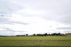 Agricoltura in Norvegia Fotografie Stock