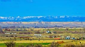 Agricoltura occidentale di Colorado Fotografia Stock Libera da Diritti