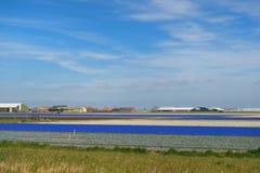 Agricoltura in Olanda Fotografia Stock