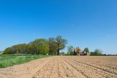 Agricoltura in Olanda Fotografie Stock Libere da Diritti