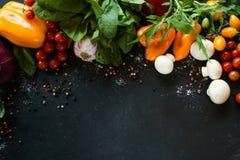 Agricoltura organica di eco del fondo della verdura fresca Fotografia Stock