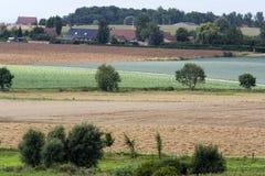 Agricoltura pittoresca Immagine Stock Libera da Diritti