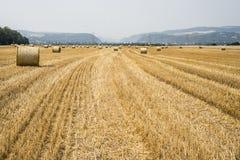 Agricoltura raccolta del campo con le balle della paglia durante l'estate Germania vicino a Andernach Fotografie Stock Libere da Diritti