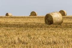 Agricoltura raccolta del campo con le balle della paglia durante l'estate Germania vicino a Andernach Immagine Stock Libera da Diritti