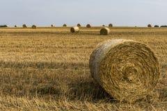 Agricoltura raccolta del campo con le balle della paglia durante l'estate Germania vicino a Andernach Fotografie Stock