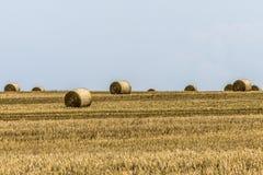 Agricoltura raccolta del campo con le balle della paglia durante l'estate Germania vicino a Andernach Immagine Stock