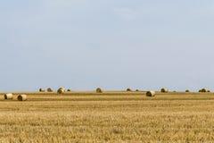 Agricoltura raccolta del campo con le balle della paglia durante l'estate Germania vicino a Andernach Fotografia Stock Libera da Diritti