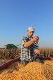 Agricoltura, raccolto di cereale, agricoltore ed il raccolto Immagine Stock Libera da Diritti