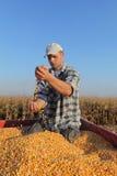 Agricoltura, raccolto di cereale, agricoltore ed il raccolto Fotografia Stock Libera da Diritti