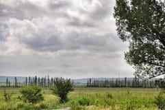 Agricoltura in Russia Fotografia Stock Libera da Diritti