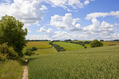 Agricoltura scenica Immagini Stock